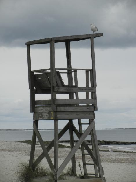 Last Lifeguard at the Beach