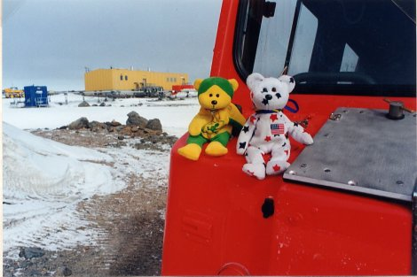 Bears on Hagglund