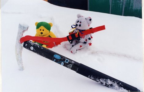 Bears With Ice Ax