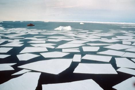 Antarctica 1 063